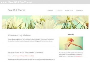 Meij website ontwerper in Delft: beautiful pro thema voor WordPress