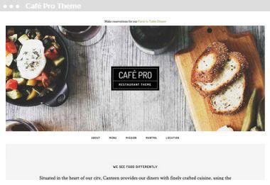 Meij website ontwerpen in Delft cafe pro theme