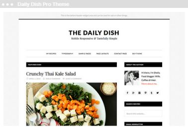 Meij webdesign Delft daily dish pro theme