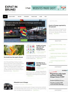 expat in brunei news