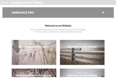 web design Ambiance Pro Thema