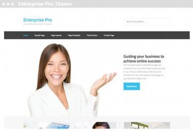 web design Enterprise Pro Theme