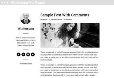 Meij website maker in Delft Wintersong Pro Theme