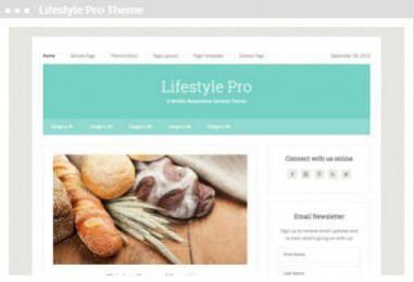Meij website ontwerpen in Delft lifestyle pro theme
