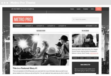 Meij webdesign Delft metro pro theme