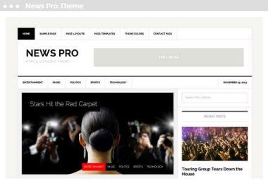 Meij webdesign Delft News Pro Theme