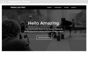 WordPress Child Themes of Genesis: included in a webdesign pack - paralax pro theme