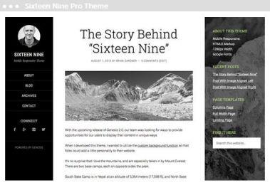 website ontwerper in Delft sixty nine pro thema