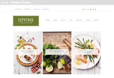 Meij website ontwerpen in Delft Executive Pro Theme