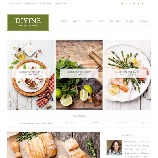 webdesign delft, wordpress webwinkel thema devine