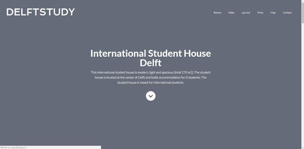 website delftstudy gemaakt door meijwebdesign