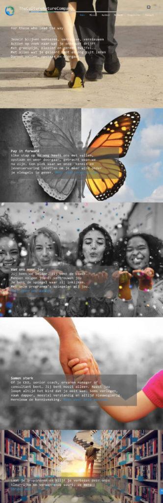portfolio meij webdesign tcncompany