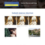 webdesigner portfolio blog wordpress website
